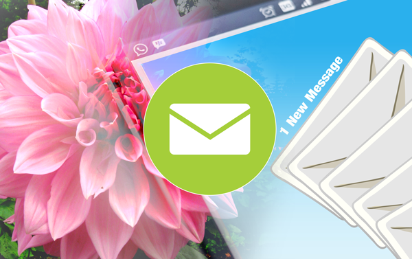 Email newsletter marketing cheat sheet best practices marketing DIG